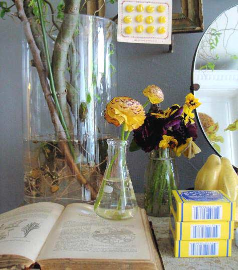 Home Inspiration Oversized Glass Vases And Beakers A Cup Of Jo