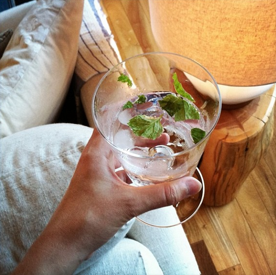 jenny-gordy-seltzer-with-mint