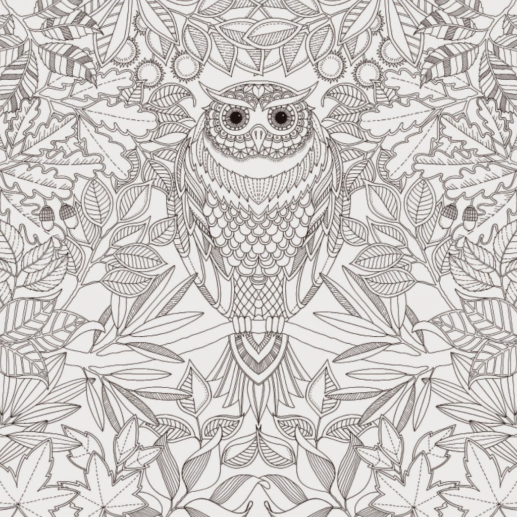 Anti stress colouring pages for adults - Owl Jpg
