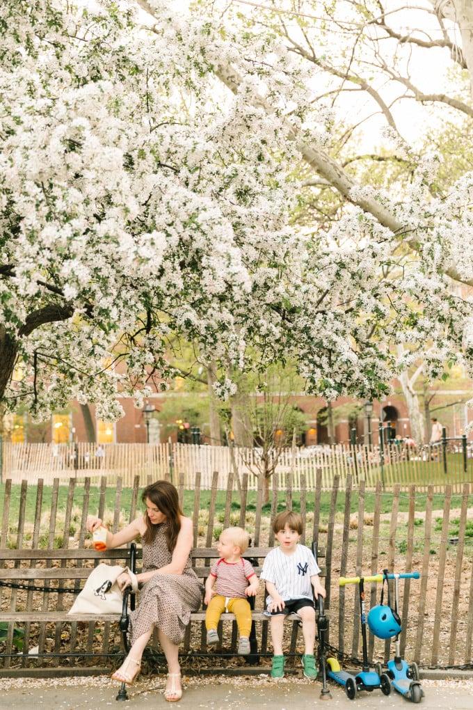 washington-square-park-family