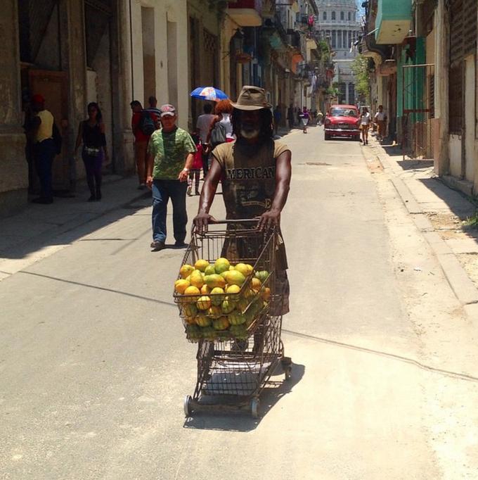 cuba-mangoes
