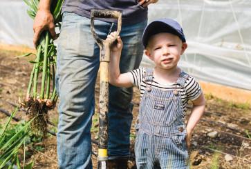 Blue Apron Farm Visit