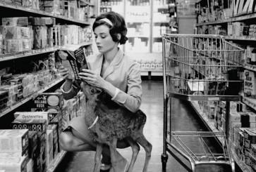 audrey_hepburn_supermarket_deer_bw2