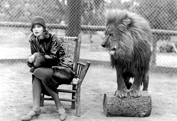 greta_garbo_lion