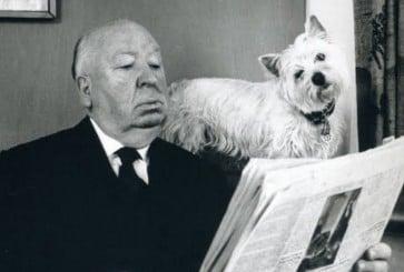hitchcock-dog