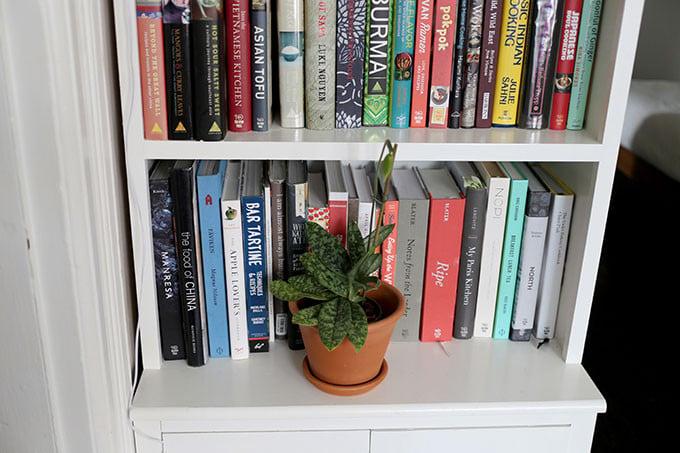San Francisco Bookshelf