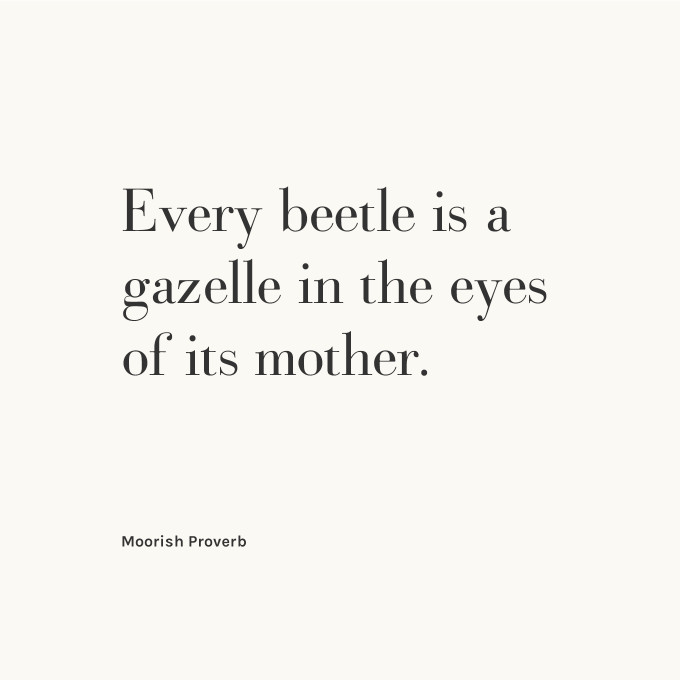Every beetle is a gazelle in the eyes of its mother. — Moorish Proverb
