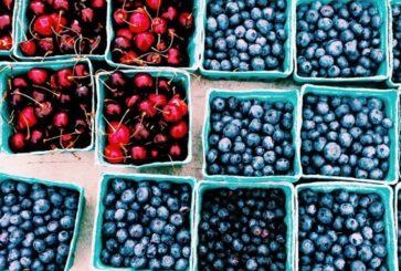 veronica-olson-blueberries-cherries