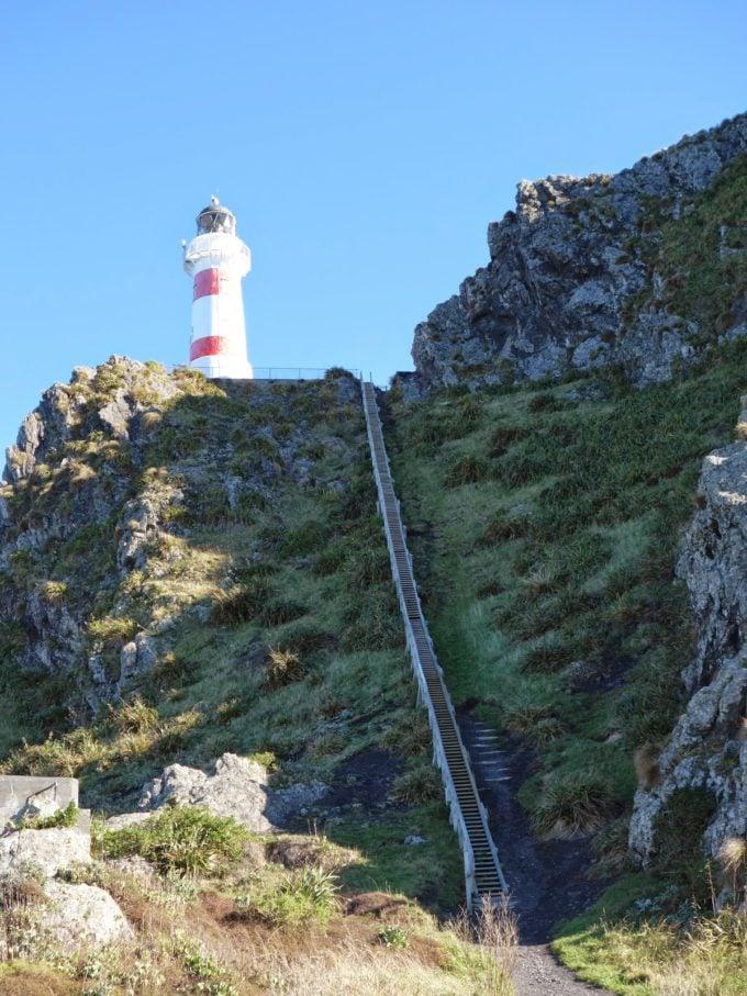 Motherhood Around the World: New Zealand