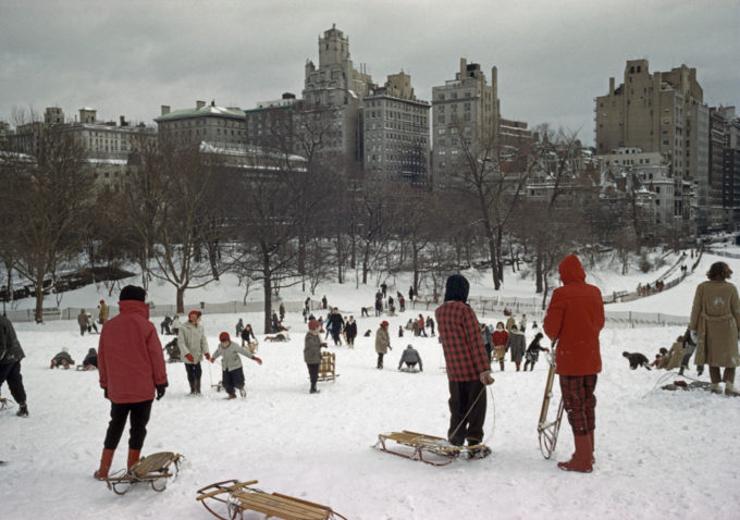 Sledding in NYC by Elliott Erwitt