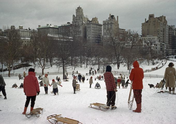 Sledding in NYC by Elliott Erwitt