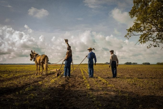 Oscar-Nominated Film Mudbound