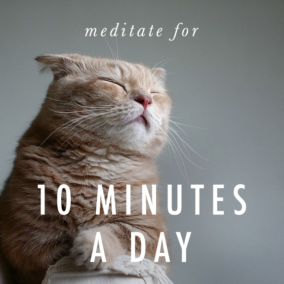 Weekly Challenge: Try to Meditate