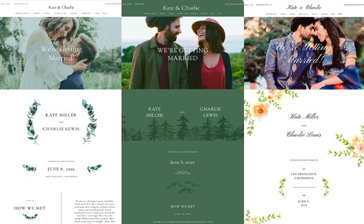 Zola Wedding Websites