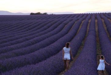 Parenting in Provence