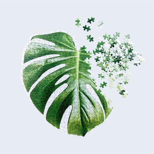 monstera leaf puzzle