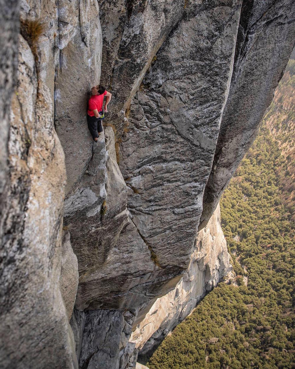 Free Solo with Alex Honnold