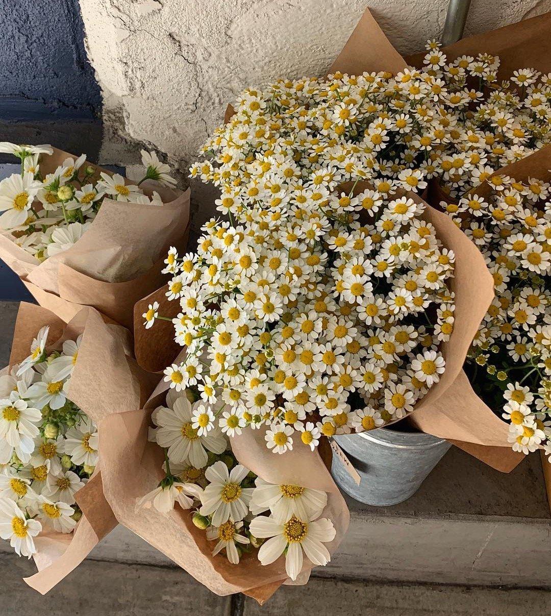 flowers in san francisco