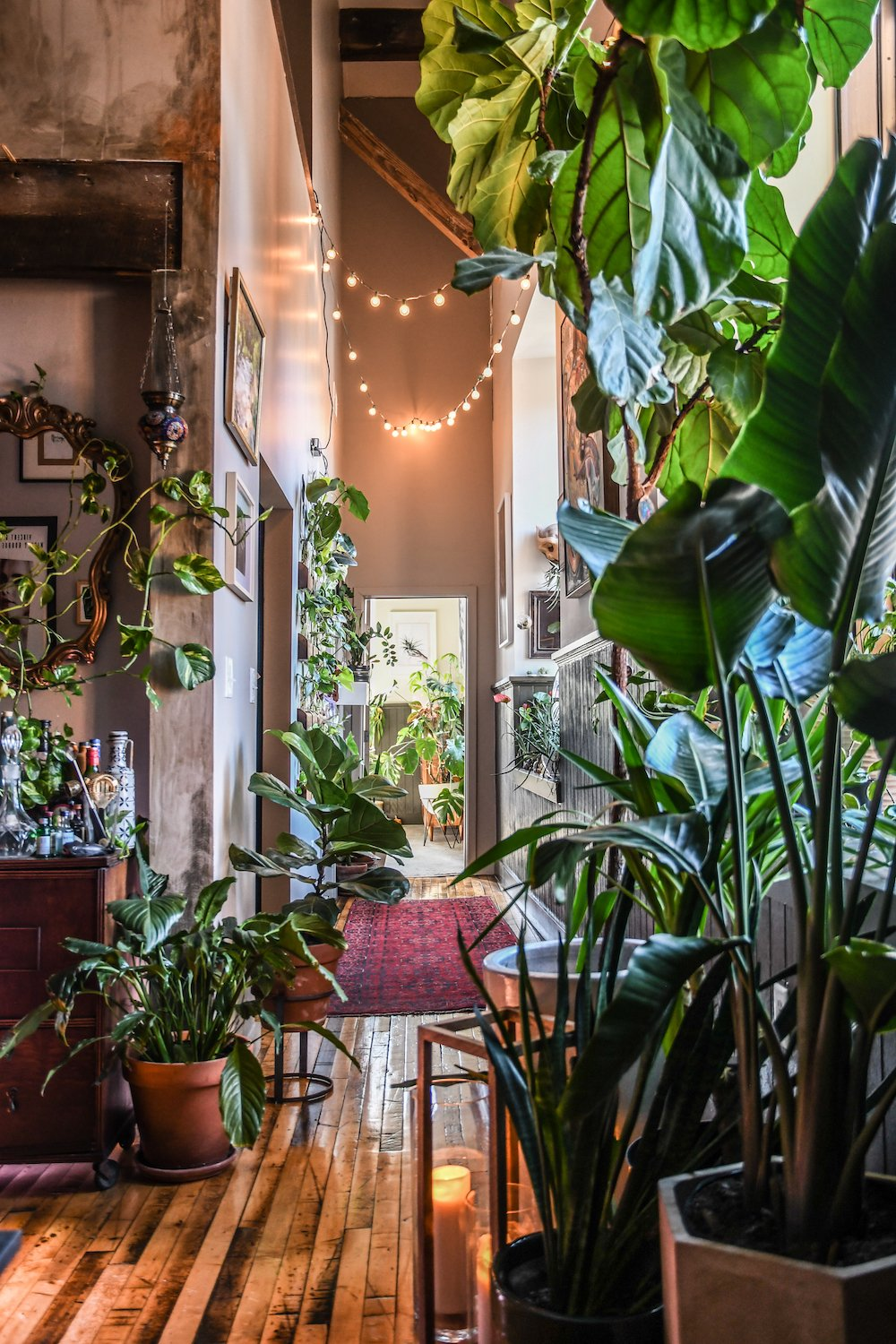 Garden Bush: This Apartment Is A Plant Lover's Dream