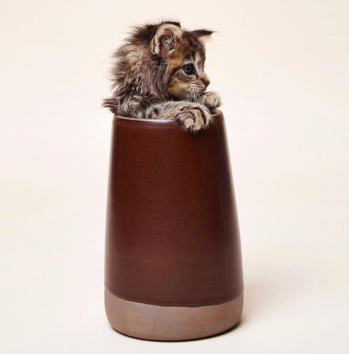 East Fork Pottery vase