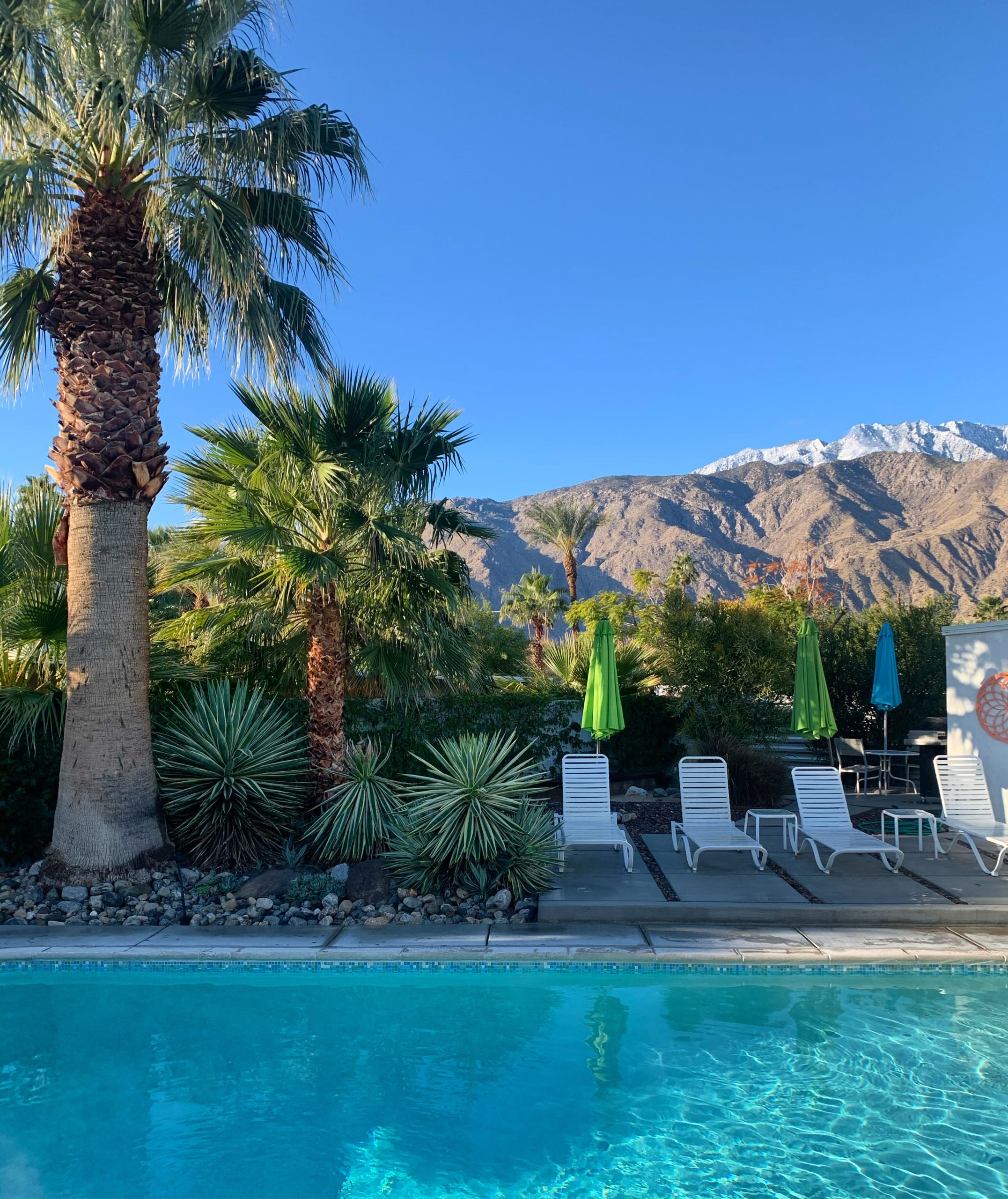 Best palm springs airbnb