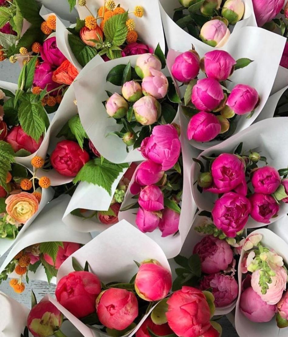 flores de Hilary horvath