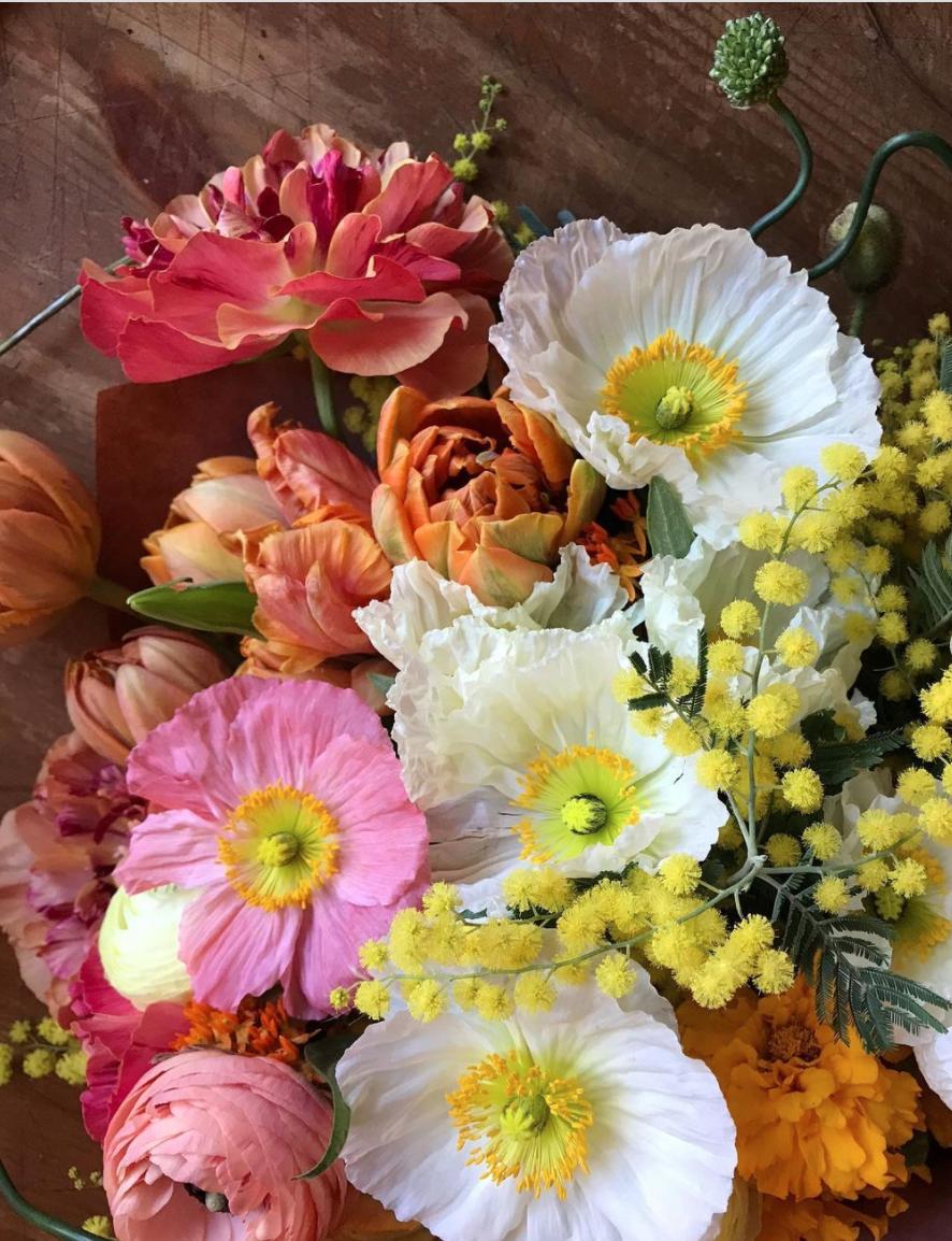 flowers by Yasmine Mei