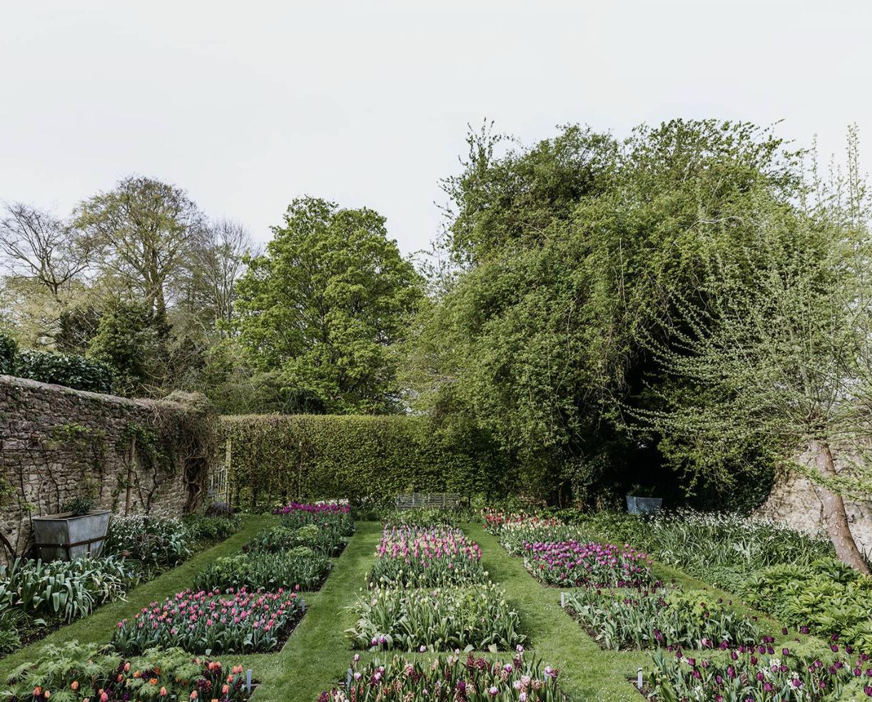 gardens by Éva Németh