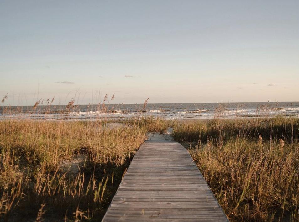 beach by Olivia Rae James